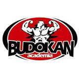 Academia Budokan - logo