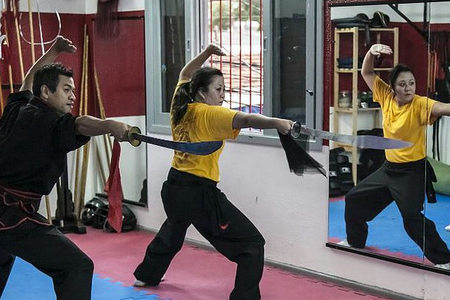 Academia Kung Fu 5 Animais -