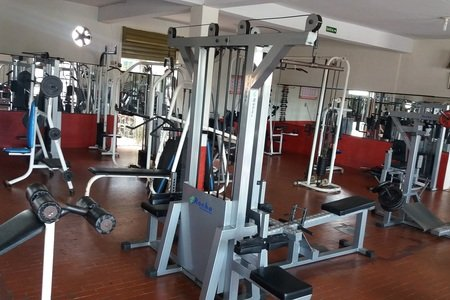 Power Muscle Academia
