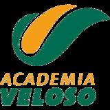 Academia Veloso - logo