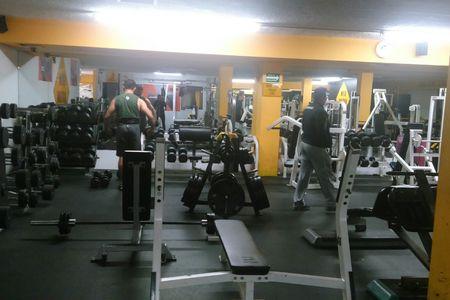 Gym Nation Fitness -