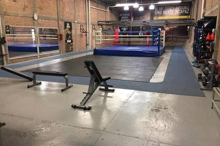 Box Arena -