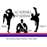Academia Stadium - logo