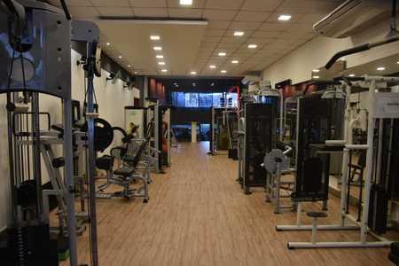 Wellness Academia -