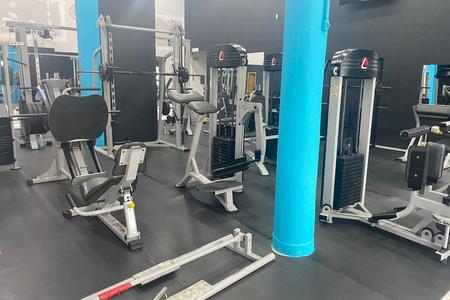 Körper Fitness