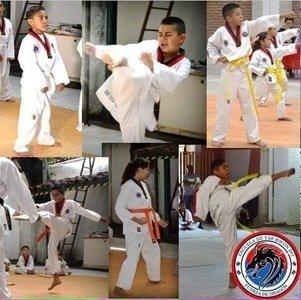 Escuela de Taekwondo fuerza de dragón