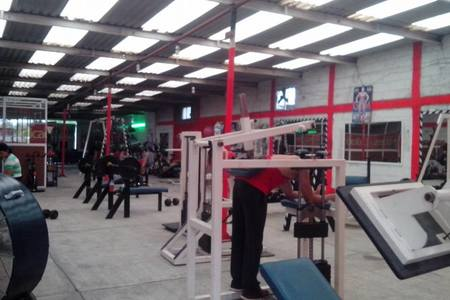 Buenavista Gym -