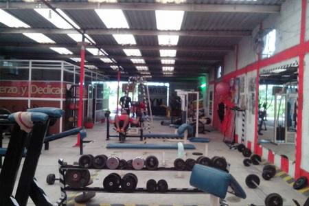 Buenavista Gym