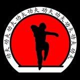 Associação Dragões Do Sul Kung Fu Passa Vinte - logo