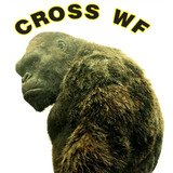 Cross Training Wf - logo