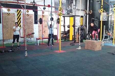 ExFactory Fitness / MMA and Low Cost Gym
