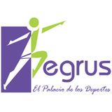 Egrus El Palacio De Los Deportes - logo