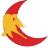 Academia Dançando Na Lua - logo