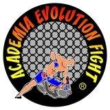 Academia Evolution Fight - logo