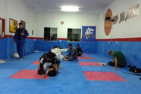 Hst Jiu Jitsu Hernandes Silva Team -