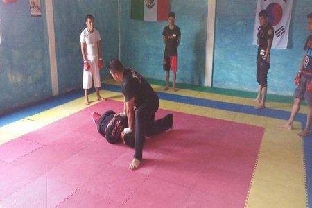 Lion Warrior's MMA