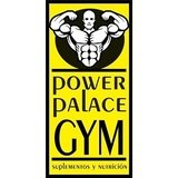 Power Palace Gym - logo