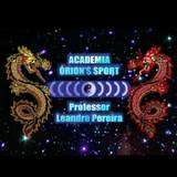 Academia Orions Sport - logo