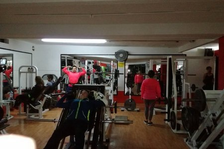 New's Gym -