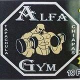 Alfa Gym - logo