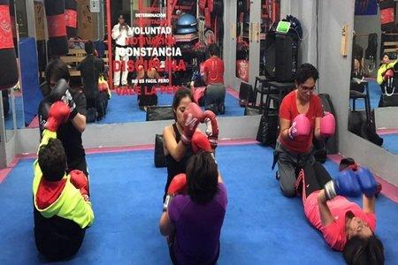 Gym The Jungle San Pedro de los Pinos -