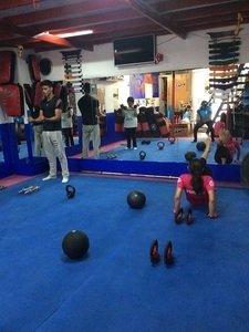 Gym The Jungle San Pedro de los Pinos