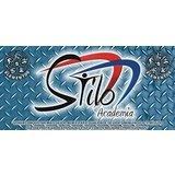 Academia Stilo - logo