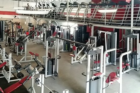 Body Action Academia -