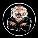 Academia Korean Tiger - logo