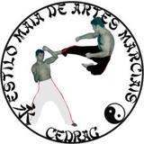 Centro Esportivo Dragão Guerreiro – Escola de Artes Marciais - logo