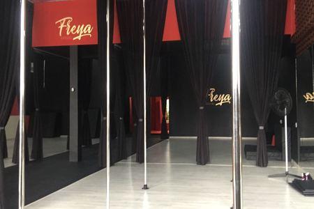 Freya Aero Dance