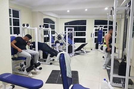Potros Gym -