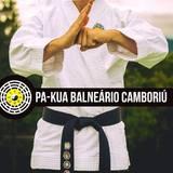 Escola Pa Kua Balneário - logo