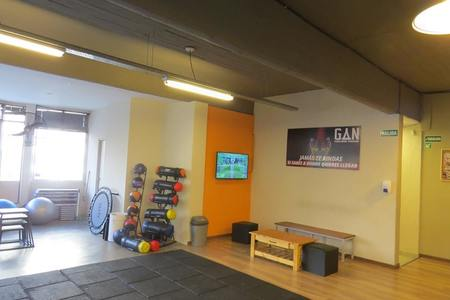 GAN Functional Training -