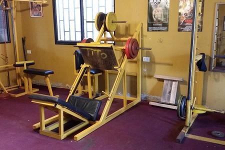 Pit Bull Gym