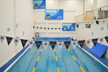 Escuela de natación Pingüis -