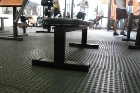 Fenix Fitness Academia De Ginastica -