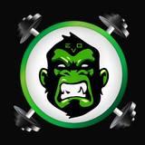 Academia Evolution - logo